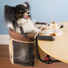 The Pet High Chair... I have no words.  OMG so funny