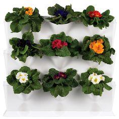 garden ideas, live wall, green garden, vertic garden, green wall