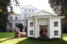 Alabama dog mansion