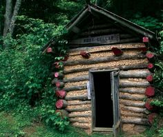 The Truth About Building a Root Cellar