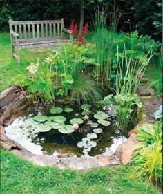 Make Your Own Backyard Wildlife Pond | Instructions here: http://twobrosgardening.com/aquatic/ponds/how-to-make-a-wildlife-pond/
