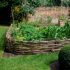 Wattle fence to keep my chickens out of the garden. A wattle fence can take on any shape, even curved. PS Notice how the top level is braided for strength. veggie gardens, yard, branch, vegetables garden, herbs garden, willow, garden beds, wattl fenc, garden fences