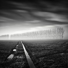 Hasselblad, digital back. In Nature, Scenery, Countryside. Lines Of Nature, photography by Pierre Pellegrini. Image #443407