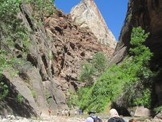 The Narrows at Zion National Park