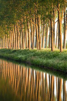 Damse Vaart - Damme, Belgium