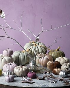 I love the shape of pumkins especially in these different colors.