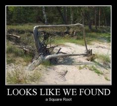 square root.. math jokes @Christine Ballisty Smythe Smythe Smythe Karako