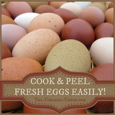 How to Cook and Peel fresh eggs easily~ no additives required!