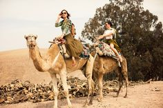 Camel riding in Morocco, on to do list.