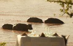 The Luxury Retreat - Northern Selous, Tanzania