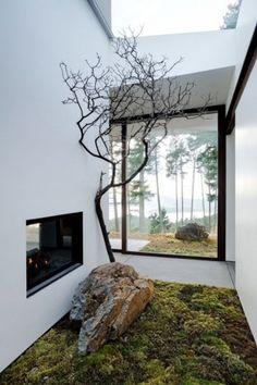 Jardin interior.