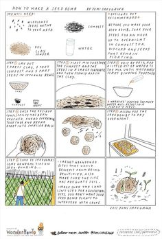 Guerrilla Gardening 101: How to Make a Seed Bomb « The Secret Yumiverse