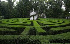 """""""The maze at Villa Pisani, in the Veneto region of Italy, was created in the early 1700s, and is said to be once of the world's most complicated. Located in the town of Stra, the maze is made up of layers of pathways in 12 concentric rings with high hedges leading to a central tower. Famously, because Napoleon had once been lost in the maze, when Hitler and Mussolini met for a chin wag there, neither of them were willing to venture into the maze in case they too got lost."""" Shame."""