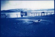 Making Cyanotypes | Lomography