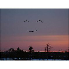 God has a great sense of humor!!!