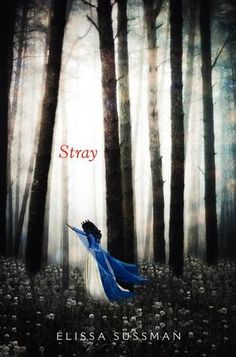Stray by Elissa Sussman