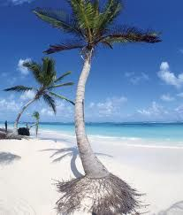 My next vaca spot..Punta Cana