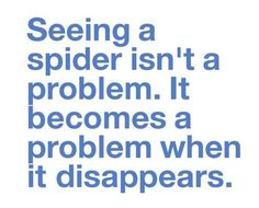 I Don\'t Like Spiders