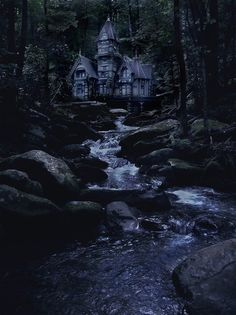 Forest House, The Enchanted Woods