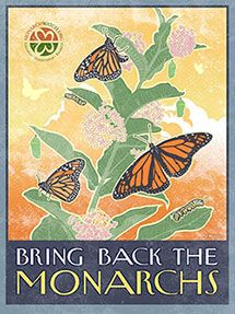 Monarch butterfly populations are declining due to loss of habitat. to assure a future for monarchs, conservation and restoration of milkweeds needs to become a national priority.     Chip Taylor, Director, Monarch Watch