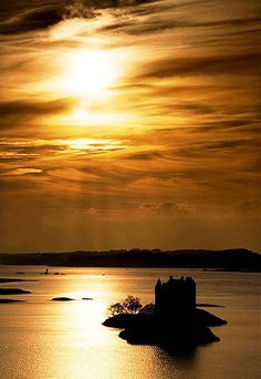 Castle Stalker, Loch Laich, Scotland - sits on what is usually a tiny island in in western Scotland; at low tide the water receides enough that you might be able to wade over from the mainland
