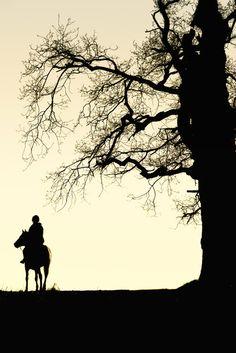 Horse riding at sun rise!