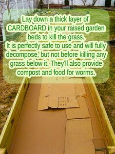 Cardboard boxes for Raised Garden Beds