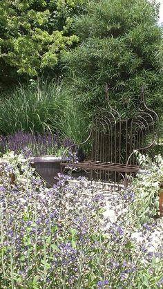 Gardens On Pinterest Water Garden
