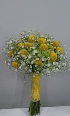 baby's breath and billy balls