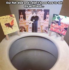 Our fish died...  ROFLMAO