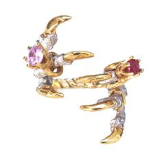 Pigeon Grasp Claws with Ruby and Pink Rings by Tessa Metcalfe