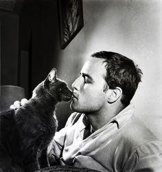 Brando & cat.