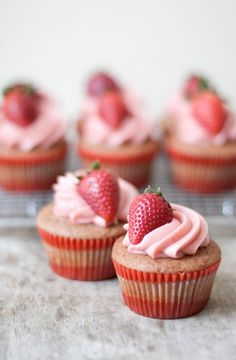 Strawberry Cupcakes - Cupcake Daily Blog - Best Cupcake Recipes .. one happy bite at a time! Chocolate cupcake recipes, cupcakes