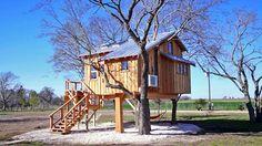 Treehouse masters (treehouse)