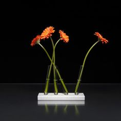 Adaptation Magnetic Vase Silver now featured on Fab.
