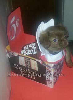 Sweet Chocolate Peekapoo Tootsie Roll Costume... Coolest Halloween Costume Contest