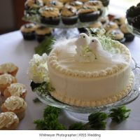 A single tier white wedding cake with a DIY bird cake topper from Katy and Dereks Simple and Classic Summer Wedding