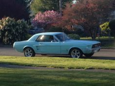 Beautiful '67 Mustang #ClassicNation