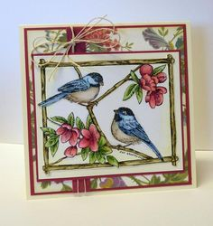 FS355   Birds and Blossoms