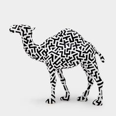 Camels by Studio Muti