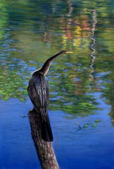 Artists in Pastel: Mary Ann Pals (USA)