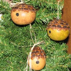 cute idea using pine cone's to top these