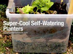 DIY self-watering planters / http://villagegreennetwork.com/make-self-watering-planter-reclaimed-materials/