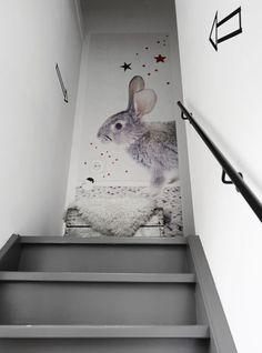 Behang - wallpaper rabbit