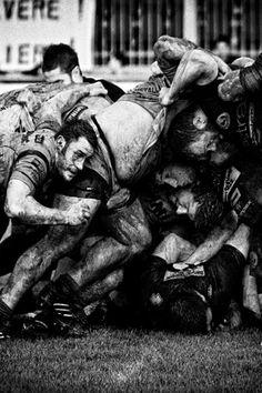 rugby scrum by Daniele Bettazzi