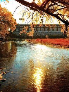 ~Shimmer~  Chippewa Falls, WI
