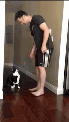 awwwwww | This Hug Between A Cat And His Human Might Be The Best Hug Of All Time