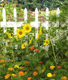 INSPIRATION THURSDAY - flowers and white picket fence!