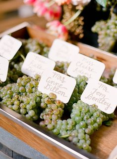 Gorgeous grape escor