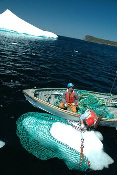 """Iceberg harvesters use nets to collect chunks of ice. For Iceberg Vodka to stay afloat, """"the vodka itself didn't need to change, but its marketing needed immediate help,"""" says David Meyers, a Canadian who spent most of his career managing international rum and cognac brands and joined Iceberg Vodka 18 months ago as its chief executive officer. (Iceberg Vodka)"""